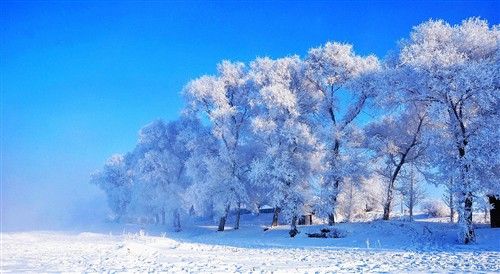 【哈尔滨】吉林雾凇岛、冰城哈尔滨、亚布力滑雪、哈雪谷穿越、童话雪乡、长春伪皇宫5日