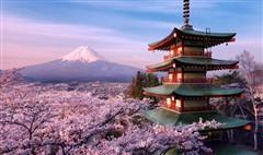日本本州温泉、樱花六天之旅