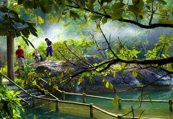 【河源】桂山森林大氧吧、镜花缘-篝火狂欢晚会、入住万绿湖湖边别墅2天养生度假游