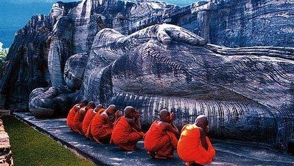 玩转斯里兰卡—探索鲸奇之旅 纯玩8天7晚品质游