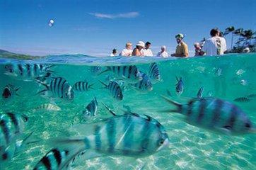 <斐济八日游>玛娜岛+希尔顿-双岛套餐
