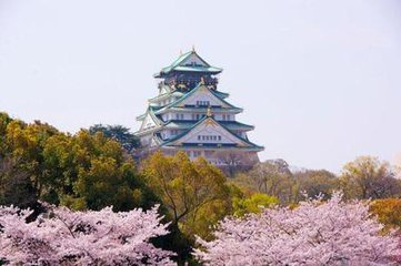 日本本州六天赏枫之旅(羽阪)