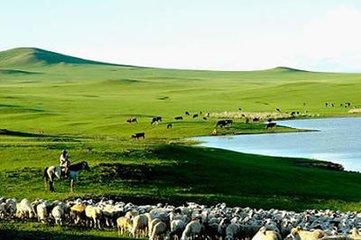 哈尔滨呼伦贝尔大草原额尔古纳莫尔道嘎满洲里双飞双卧六日游