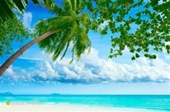 大东海海洋公园好玩吗?三亚大东海梦龙海洋馆怎么样?