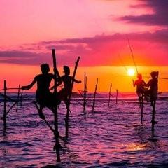 玩转斯里兰卡—海滨小火车·巨划算之旅 纯玩6天5晚品质游