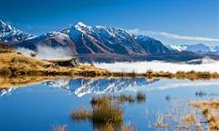 新西兰观看企鹅地点推荐