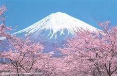 日本秋天旅游该怎么玩?