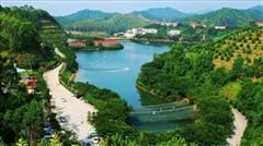 梅州雁南飞茶田度假村、叶帅纪念公园、千佛塔、客家公园、济济楼两天纯玩团