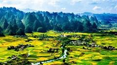 海南迎来贵州千人旅游团