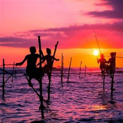 【斯里兰卡】玩转斯里兰卡—海滨小火车·巨划算之旅 纯玩6天5晚品质游