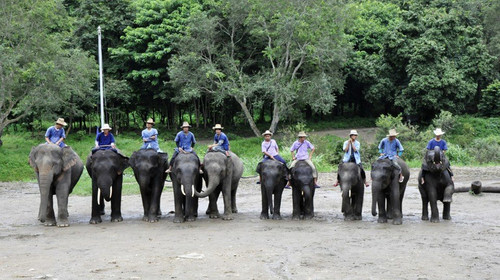 想去泰国旅游有哪些注意事项,当地有什么特别的风俗禁忌的?