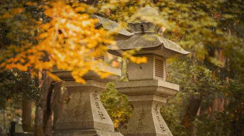 什么时候去日本便宜,几月去日本旅游便宜