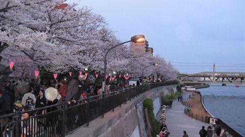 出国旅游6750元去日本 长春一旅行社却不发旅游团了