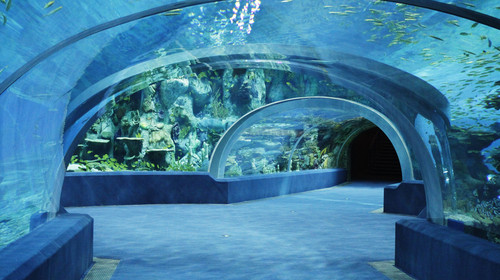 汽车站到东莞金竹湾水上欢乐世界怎么走?常平金竹湾水上乐园专线车?