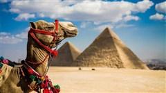 <埃及深度全景10天游>广州埃及航空直飞,开罗,红海,卢克索三大城市,全程五星级酒店,包含一张1G上网流量卡