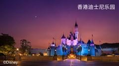 <香港3日游>人气领队,嗨玩香港迪士尼乐园整天,海洋公园5小时,1天自由活动,含名单费,指定入住香港九龙贝尔特酒店