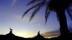 <泰国清迈机票+当地5晚6日半自助游>纯玩冒险派,激流泛舟,丛林飞跃,泰国清迈夜间动物园含接送惊喜  黑白双庙