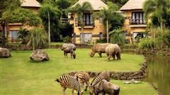 <巴厘岛机票+当地4晚5日游>2017暑假最新,特别设计亲子游小包团,夜游野生动物园,住野生动物园别墅,海边国际五星酒店,全景玻璃狮子餐厅