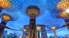 <新加坡4晚5日游>正点航班 纯玩无购物 滨海湾南花园 国立大学 植物园 充足自由活动 导服费