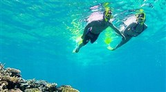 <澳洲大堡礁墨尔本新西兰12日游>绿岛大堡礁,悉尼海港游船,蓝山大氧吧,情怀墨尔本,牧场喂养明星动物