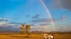 <南非-纳米比亚12天9晚游>香港QR 布须曼人 纳米布沙漠 苏斯斯黎 颓废方丹 桌山 好望角 法国小镇 开普敦半岛 探秘南非纳米比亚