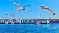 <埃及土耳其10日游>香港直飞,4晚红海/马车游卢克索,蓝色清真寺,圣索菲亚大教堂,土耳其航空