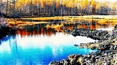 <呼伦贝尔草原-阿尔山森林公园-满洲里-国门-呼伦湖双飞6日游>纯净草原迎宾,一湖一山,深度游览
