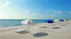 <西冲2日游>杨梅坑 情人岛 采摘草莓 入住民居、品尝沙滩烧烤、沙滩自由畅玩、不受约束