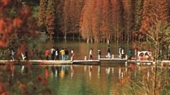 <佛山-肇庆3日游>水上乐园、名山避暑祈福、共享自助晚餐