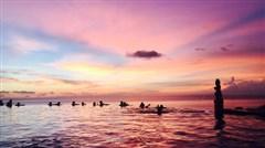 <巴厘岛4晚5日游>香港直飞,畅玩蓝梦岛(无限浮潜),六星穆丽雅下午茶,2晚海边国际五星,纯玩无购物