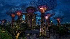 [国庆]<新加坡-马来西亚4晚5日游>零自费 探索神秘 阿凡达花园 SEA海洋馆 新加坡航空与深圳航空二地直飞选择