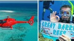 <澳洲大堡礁8日游>全程市区酒店,绿岛大堡礁,悉尼两馆一园,华纳电影世界,天堂农庄