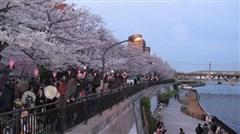 <东京-富士山-京都-大阪6日游>体验2晚日式温泉酒店,自助烤肉,海鲜御宴,神户和牛料理等