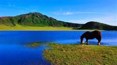 <九州-本州7日游>香港直飞 五星双温泉 水果园 九州阿苏山 Hellokitty乐园 环球影城 樱桃小丸子  和牛料理