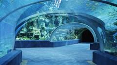 <珠海长隆海洋王国-圆明新园-石景山-野狸岛2日游>暑假乐园亲子、情侣浪漫系列,看横琴烟花汇演
