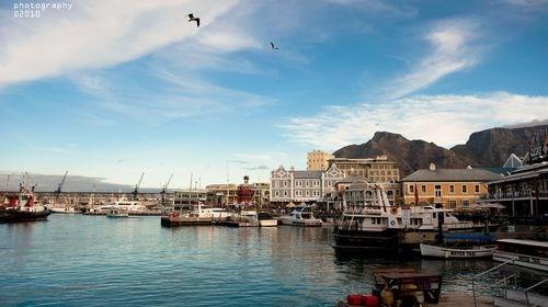 【南非】<南非8日游>比林斯堡动物园,南非三大特色餐/户外野餐,茅草屋特色酒店/酒庄赏花品酒/著名酒乡法国小镇,国泰航空