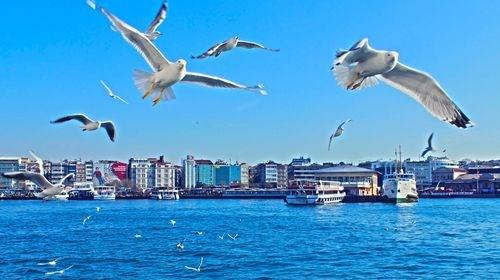 【埃及】<埃及土耳其10日游>香港直飞,4晚红海/马车游卢克索,蓝色清真寺,圣索菲亚大教堂,土耳其航空