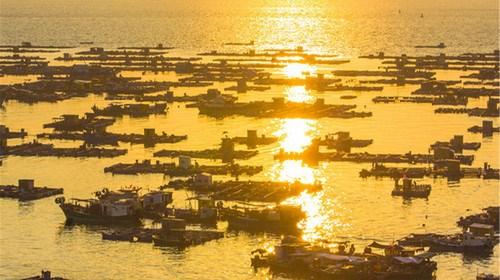 【阳江】<阳江闸坡海陵岛沙滩直通车3日游>住富海酒店海景双床房
