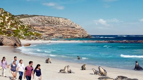 澳大利亚8日游_10月澳洲大堡礁的旅游路线_澳洲大堡礁十日游多少钱报团_双飞澳洲大堡礁十日游多少钱