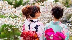 东京-箱根-富士山5晚6日游>东京迪士尼乐园或东京一天自由活动 安排赏伊豆早樱 和服体验 芦之湖游船 忍野八海 升级一晚日式温泉酒店 含个人意外险