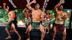 [春节]<纯玩无购物-新西兰北岛9日游>纯玩无购物 一价全含 怀托摩萤火虫洞 陶波虾场钓虾