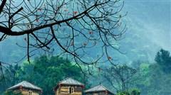 英德九州驿站-树上彩虹温泉-九重天2日游>英西峰林观秋景、奇洞探索