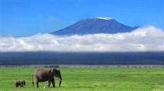<肯尼亚10日游>马赛马拉、纳瓦沙湖、2晚马赛马拉,入住树顶/湖畔/温泉/帐篷酒店、CZ免费联运