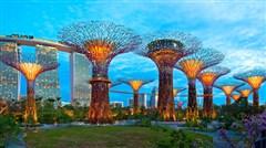 <皇家加勒比海洋航行号新加坡+吉隆坡+泰国普吉岛+槟城10天8晚> 上海往返 新加坡航空直飞 赠送岸上观光