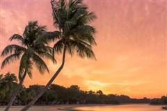 <单船票 诺唯真宝石号东南亚五国13晚14天冒险之旅>香港登船、新加坡离船