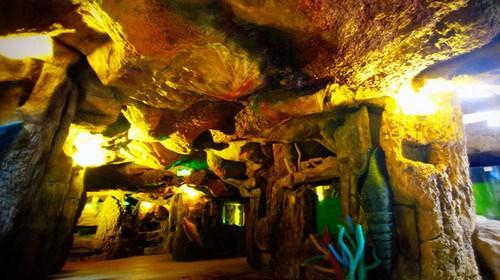 佛山2日游_佛山旅游跟团需多少钱_佛山旅行跟团_佛山游花多少钱
