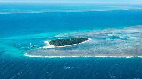 【澳大利亚】<澳大利亚-大堡礁-悉尼-黄金海岸8日游>悉尼港,穿越热带雨林,升级游船西餐,BBQ烧烤午餐,游船畅游大堡礁