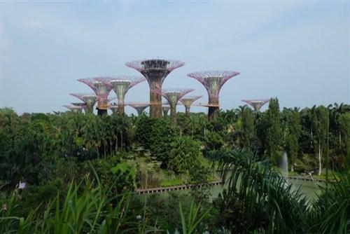 新加坡5日游_到新加坡旅游旅行团_新加坡旅游组团_新加坡游十一天需要多少钱